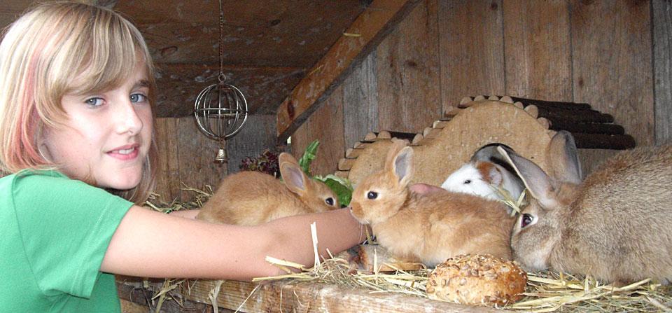 Kinder und Tiere auf dem Bauernhof im Bayerischen Wald