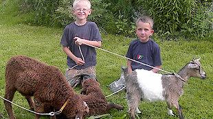 Kinder und Tiere in Bayern